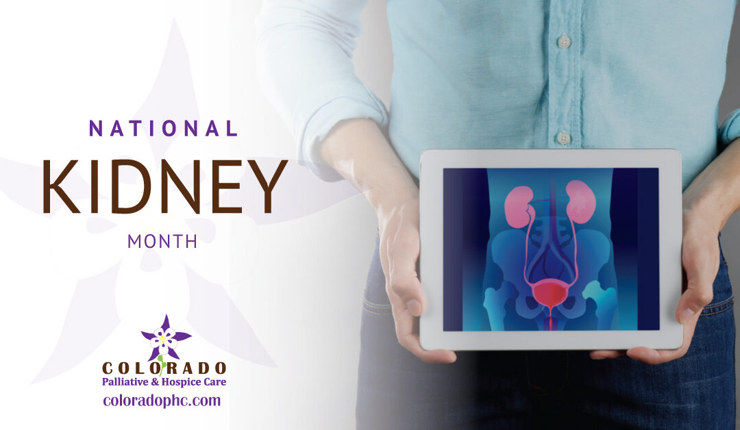 National Kidney Month: Renal Disease